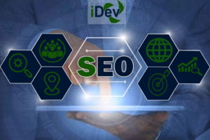 The Importance of Doing SEO for your Business?